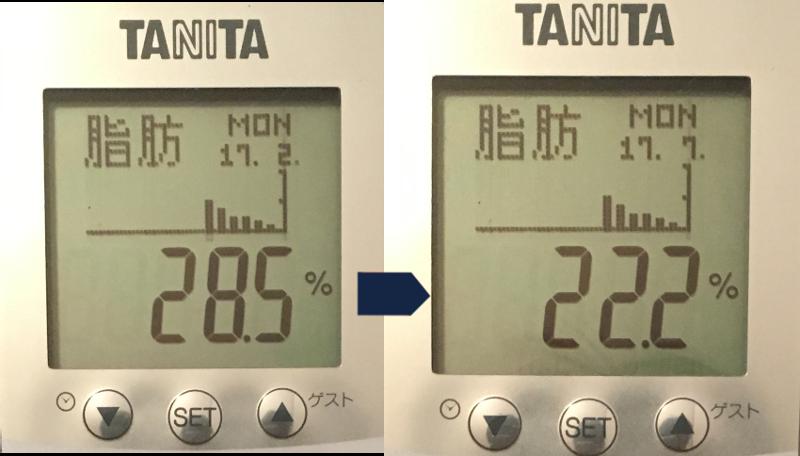 2017年2月から7月の体脂肪率